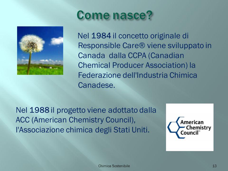 Nel 1984 il concetto originale di Responsible Care® viene sviluppato in Canada dalla CCPA (Canadian Chemical Producer Association) la Federazione dell Industria Chimica Canadese.