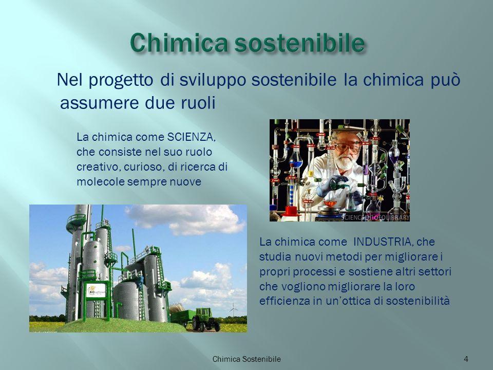 Nel progetto di sviluppo sostenibile la chimica può assumere due ruoli Chimica Sostenibile4 La chimica come SCIENZA, che consiste nel suo ruolo creativo, curioso, di ricerca di molecole sempre nuove La chimica come INDUSTRIA, che studia nuovi metodi per migliorare i propri processi e sostiene altri settori che vogliono migliorare la loro efficienza in unottica di sostenibilità