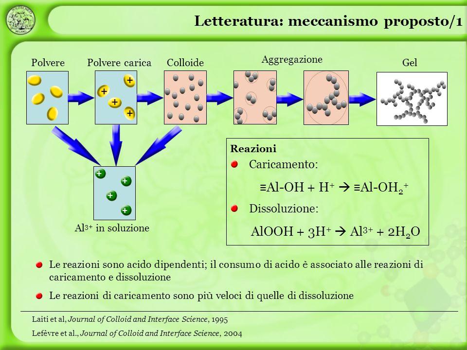 Polvere + + + + Polvere caricaColloide Aggregazione Gel Letteratura: meccanismo proposto/1 Al 3+ in soluzione + + + + Le reazioni sono acido dipendent