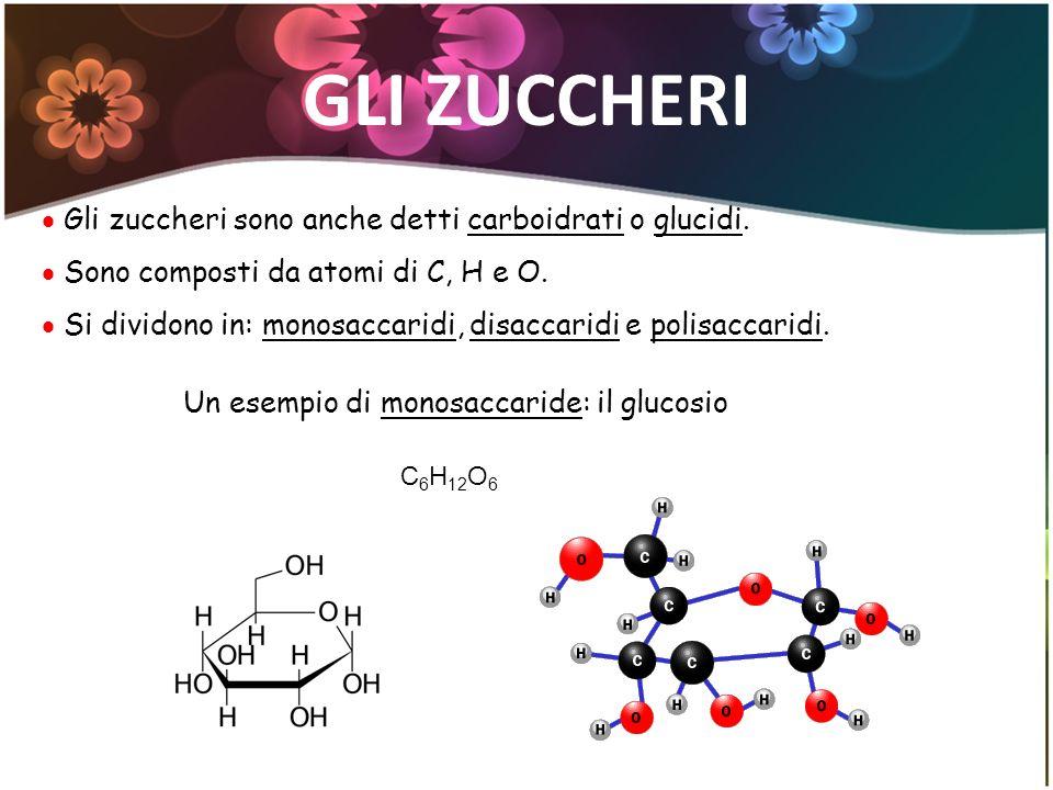 GLI ZUCCHERI Gli zuccheri sono anche detti carboidrati o glucidi. Sono composti da atomi di C, H e O. Si dividono in: monosaccaridi, disaccaridi e pol