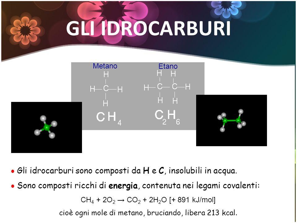 GLI IDROCARBURI Metano Etano Gli idrocarburi sono composti da H e C, insolubili in acqua. Sono composti ricchi di energia, contenuta nei legami covale