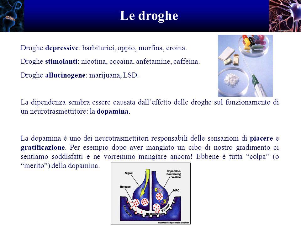 Le droghe Droghe depressive: barbiturici, oppio, morfina, eroina. Droghe stimolanti: nicotina, cocaina, anfetamine, caffeina. Droghe allucinogene: mar