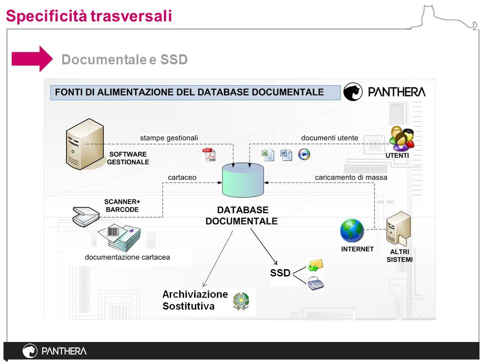 Documentale e SSD Specificità trasversali