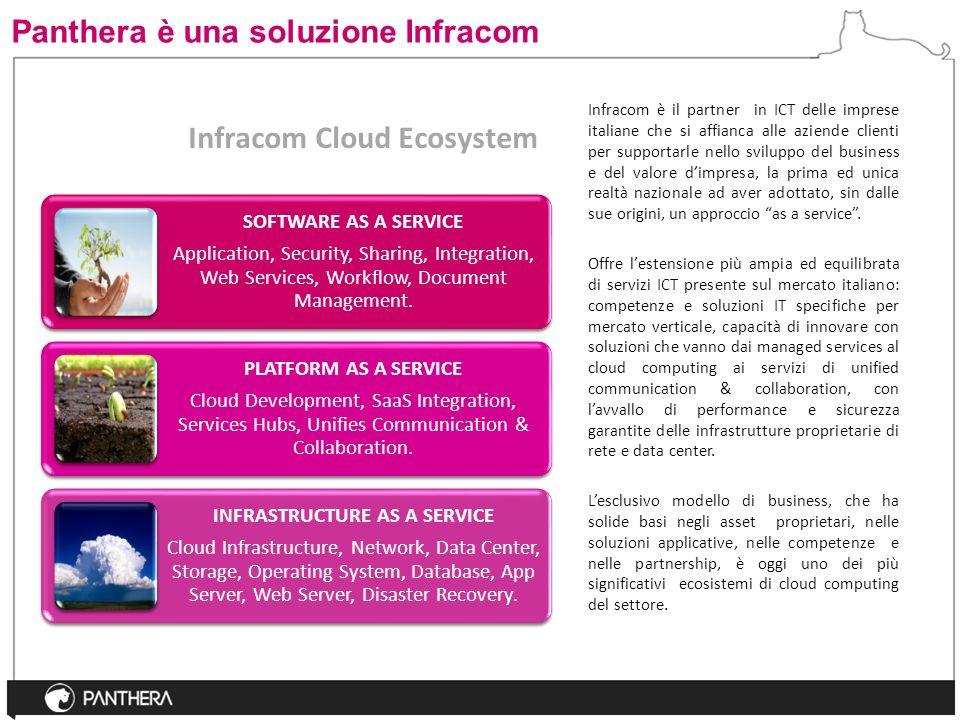 Panthera è una soluzione Infracom Infracom è il partner in ICT delle imprese italiane che si affianca alle aziende clienti per supportarle nello svilu