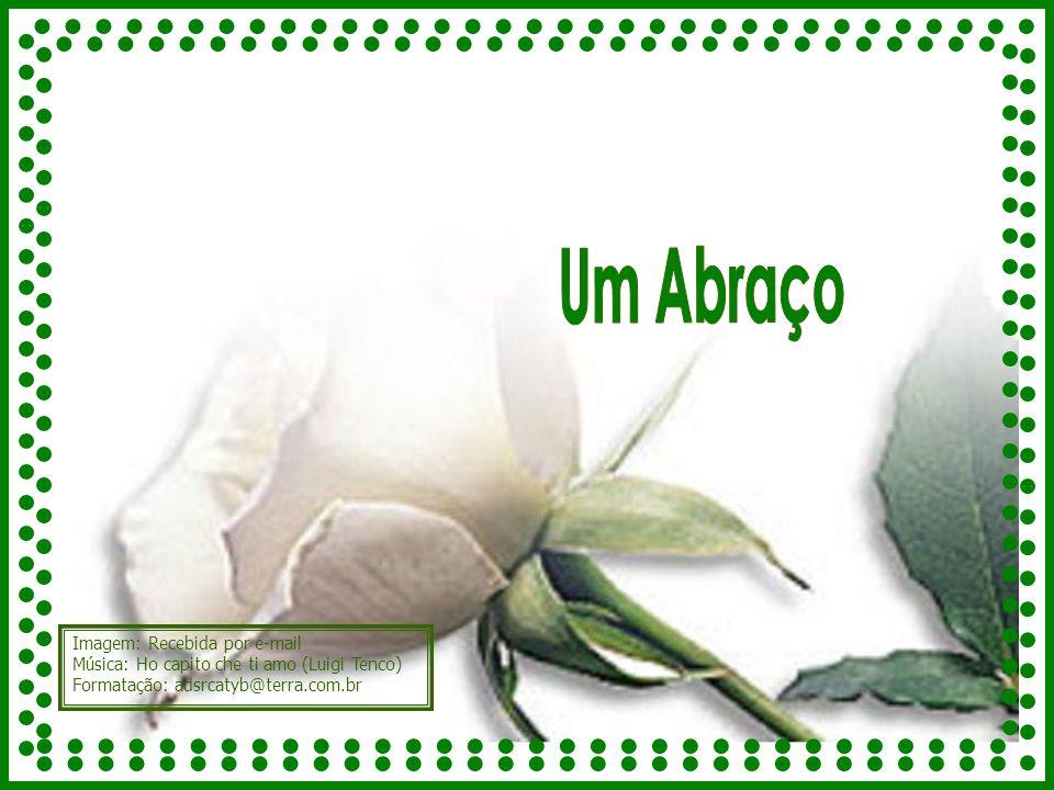 Imagem: Recebida por e-mail Música: Ho capito che ti amo (Luigi Tenco) Formatação: adsrcatyb@terra.com.br