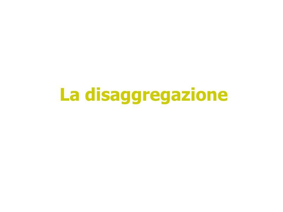 La disaggregazione