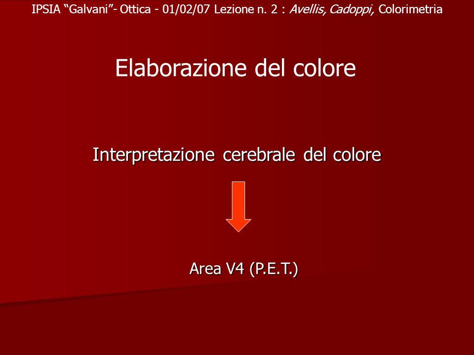 IPSIA Galvani- Ottica - 01/02/07 Lezione n. 2 : Avellis, Cadoppi, Colorimetria Interpretazione cerebrale del colore Elaborazione del colore Area V4 (P