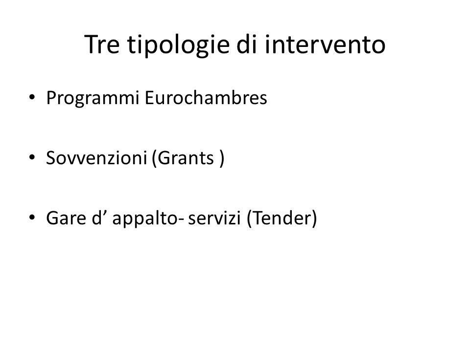 Tre tipologie di intervento Programmi Eurochambres Sovvenzioni (Grants ) Gare d appalto- servizi (Tender)