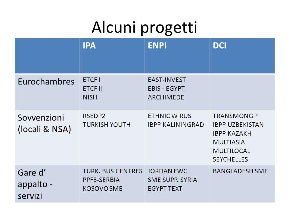 Alcuni progetti IPAENPIDCI Eurochambres ETCF I ETCF II NISH EAST-INVEST EBIS - EGYPT ARCHIMEDE Sovvenzioni (locali & NSA) RSEDP2 TURKISH YOUTH ETHNIC W RUS IBPP KALININGRAD TRANSMONG P IBPP UZBEKISTAN IBPP KAZAKH MULTIASIA MULTILOCAL SEYCHELLES Gare d appalto - servizi TURK.