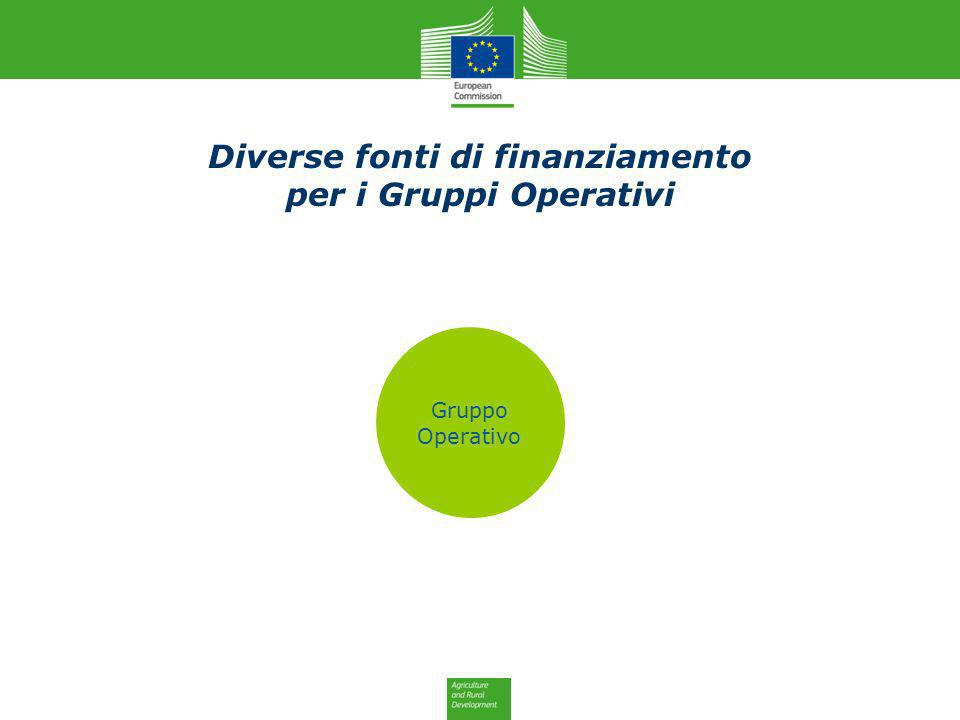Operational Group Horizon 2020 National Funds ERDF Private Funds Rural Develop- ment Diverse fonti di finanziamento per i Gruppi Operativi Gruppo Oper