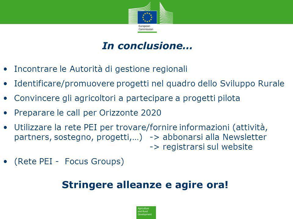In conclusione… Incontrare le Autorità di gestione regionali Identificare/promuovere progetti nel quadro dello Sviluppo Rurale Convincere gli agricolt