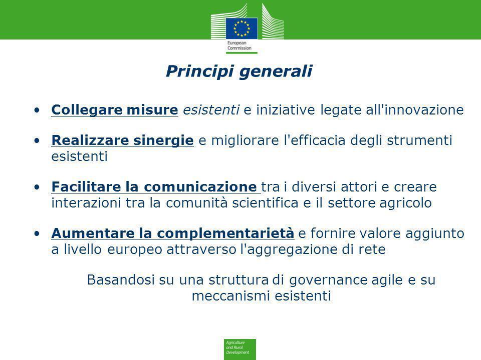 Principi generali Collegare misure esistenti e iniziative legate all'innovazione Realizzare sinergie e migliorare l'efficacia degli strumenti esistent