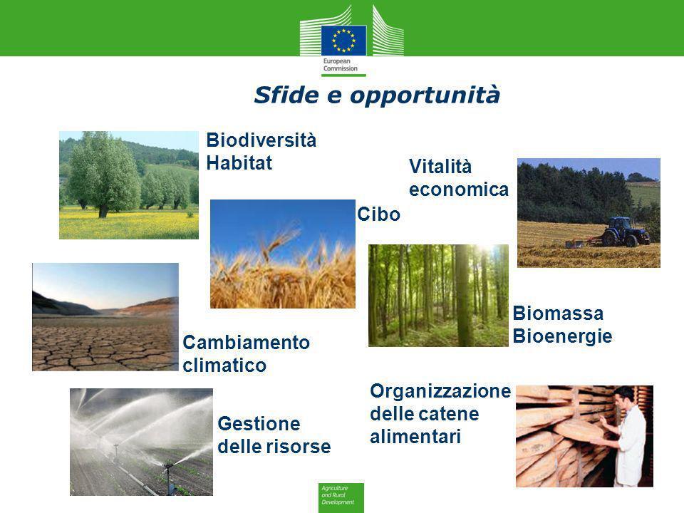 Cibo Biodiversità Habitat Vitalità economica Cambiamento climatico Gestione delle risorse Biomassa Bioenergie Organizzazione delle catene alimentari S