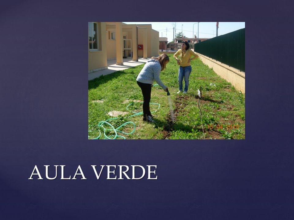 Il progetto La Scuola in Piazza, nasce dallesigenza di ricercare forme e momenti di incontro della scuola con il proprio territorio di appartenenza.