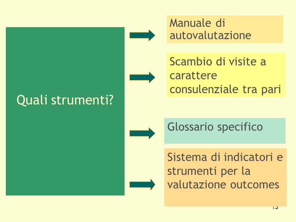 13 Quali strumenti? Manuale di autovalutazione Scambio di visite a carattere consulenziale tra pari Glossario specifico Sistema di indicatori e strume