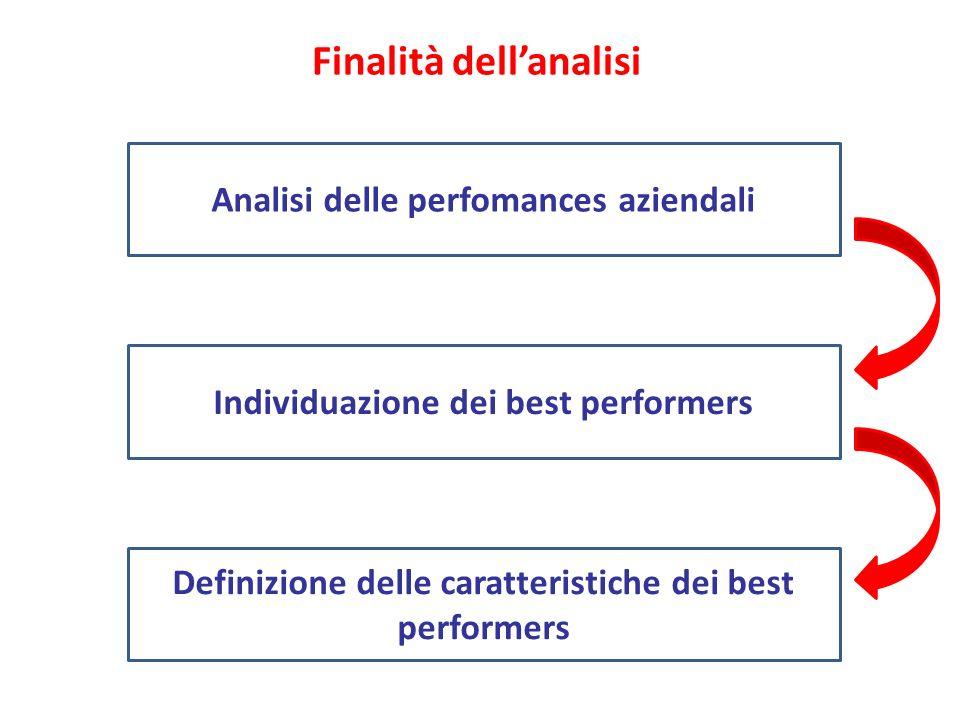 Finalità dellanalisi Analisi delle perfomances aziendali Definizione delle caratteristiche dei best performers Individuazione dei best performers