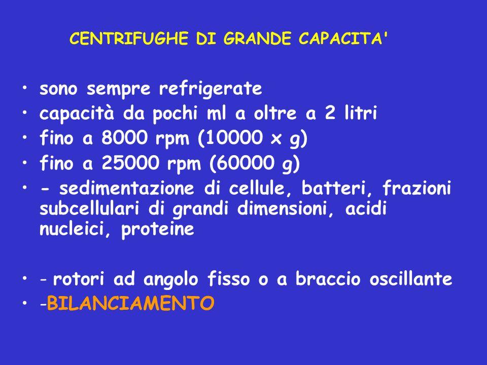 CENTRIFUGHE DI GRANDE CAPACITA' sono sempre refrigerate capacità da pochi ml a oltre a 2 litri fino a 8000 rpm (10000 x g) fino a 25000 rpm (60000 g)