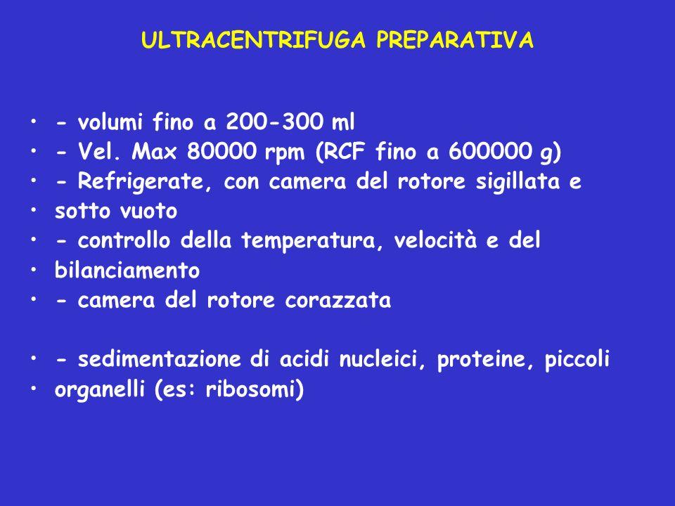 ULTRACENTRIFUGA PREPARATIVA - volumi fino a 200-300 ml - Vel. Max 80000 rpm (RCF fino a 600000 g) - Refrigerate, con camera del rotore sigillata e sot