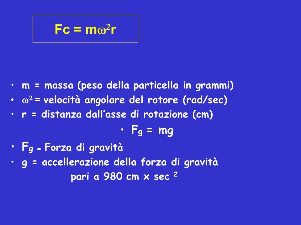 RCF (Relative Centrifugal Field) Forza Centrifuga Relativa = numero di giri al minuto RCF = 4 (rpm) 2 x r = 1.118 x 10 -5 x rpm 2 x r 3600 x 980 RCF rapporto tra peso di una particella sottoposta ad un campo centrifugo ed il peso della stessa soggetta al solo campo centrifugo gravitazionale RCF = Fc/Fg = m r = 2 r mg g
