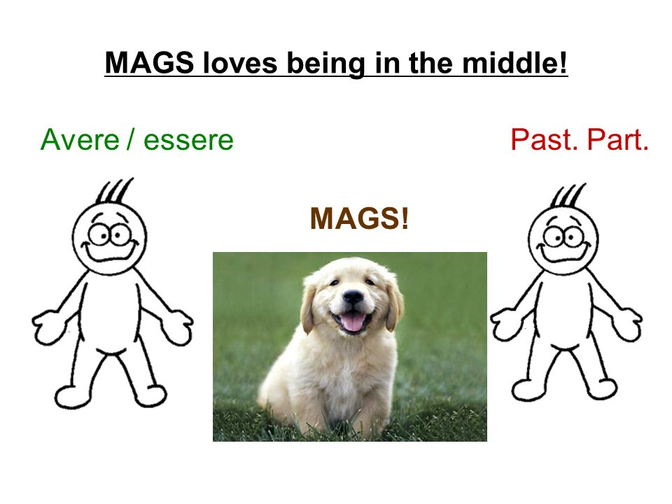 MAGS loves being in the middle! Avere / essere Past. Part. MAGS!