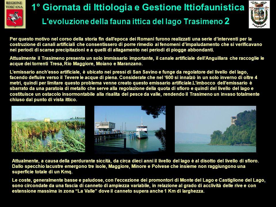 L'evoluzione della fauna ittica del lago Trasimeno 2 1° Giornata di Ittiologia e Gestione Ittiofaunistica Per questo motivo nel corso della storia fin