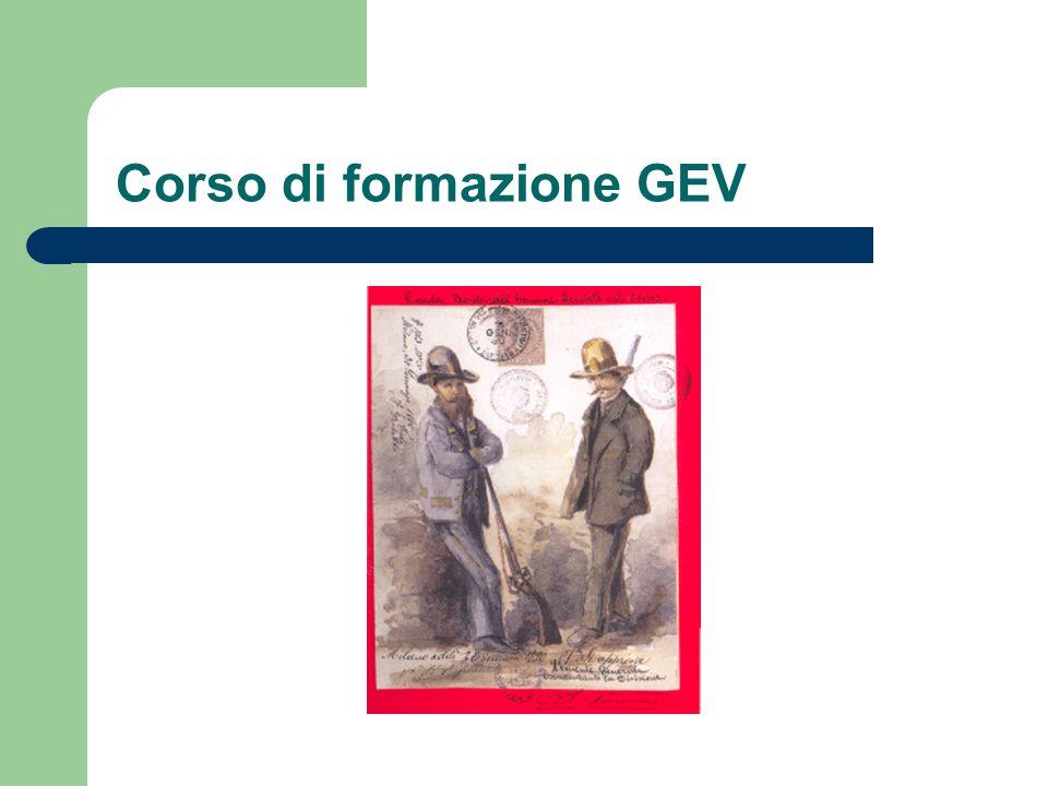 estratto dallart.1 della legge regionale quadro sulle GEV volontariato 1.