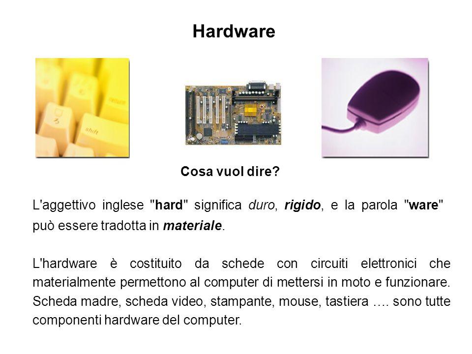 Il software è linsieme dei programmi che un computer è in grado di svolgere.
