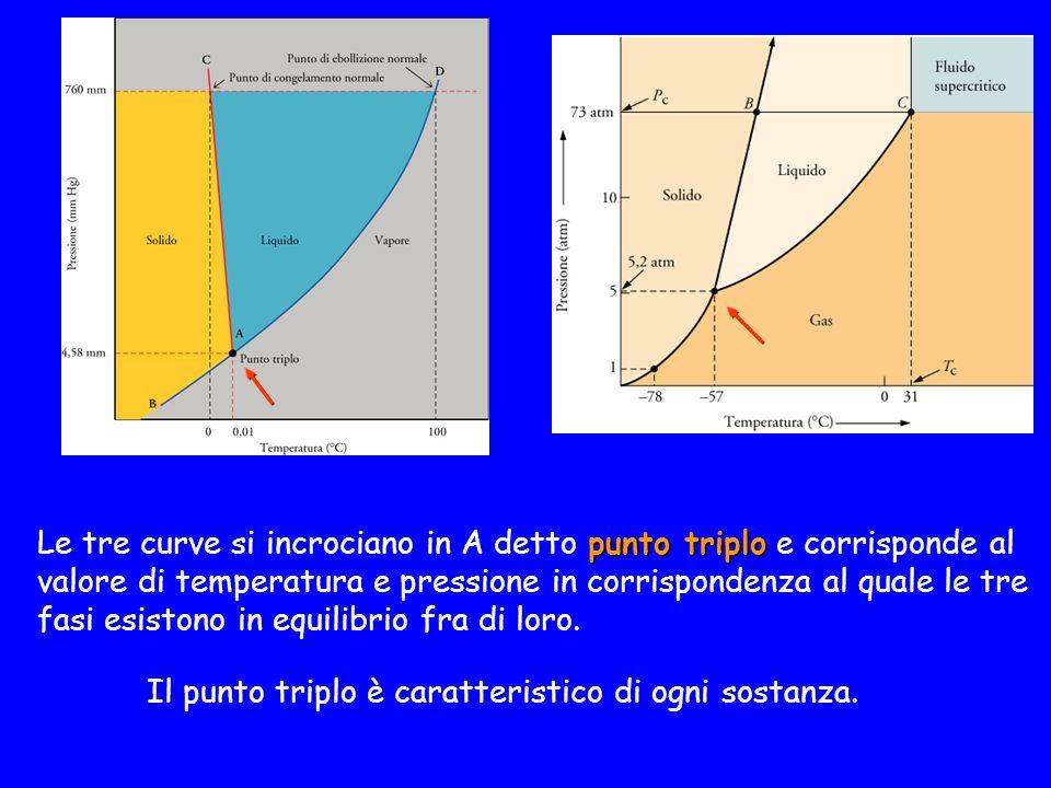 punto triplo Le tre curve si incrociano in A detto punto triplo e corrisponde al valore di temperatura e pressione in corrispondenza al quale le tre fasi esistono in equilibrio fra di loro.