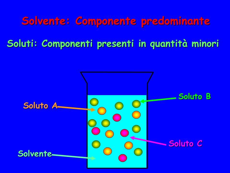 Solvente: Componente predominante Soluti: Componenti presenti in quantità minori Solvente Soluto B Soluto C Soluto A