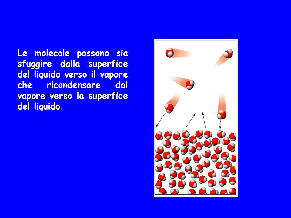 Le molecole possono sia sfuggire dalla superfice del liquido verso il vapore che ricondensare dal vapore verso la superfice del liquido.