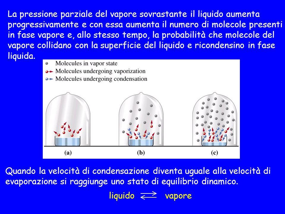 La pressione parziale del vapore sovrastante il liquido aumenta progressivamente e con essa aumenta il numero di molecole presenti in fase vapore e, allo stesso tempo, la probabilità che molecole del vapore collidano con la superficie del liquido e ricondensino in fase liquida.