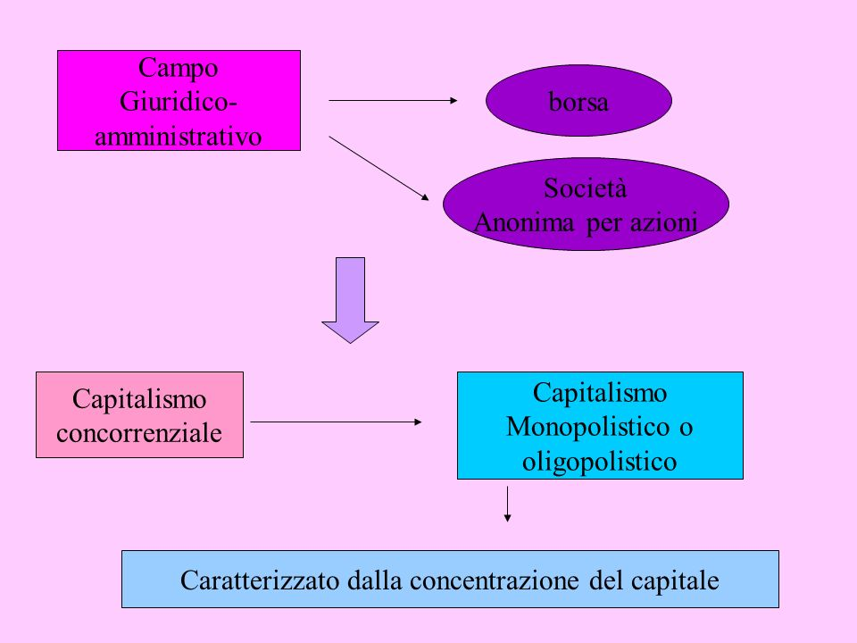 Campo Giuridico- amministrativo borsa Società Anonima per azioni Capitalismo concorrenziale Capitalismo Monopolistico o oligopolistico Caratterizzato dalla concentrazione del capitale