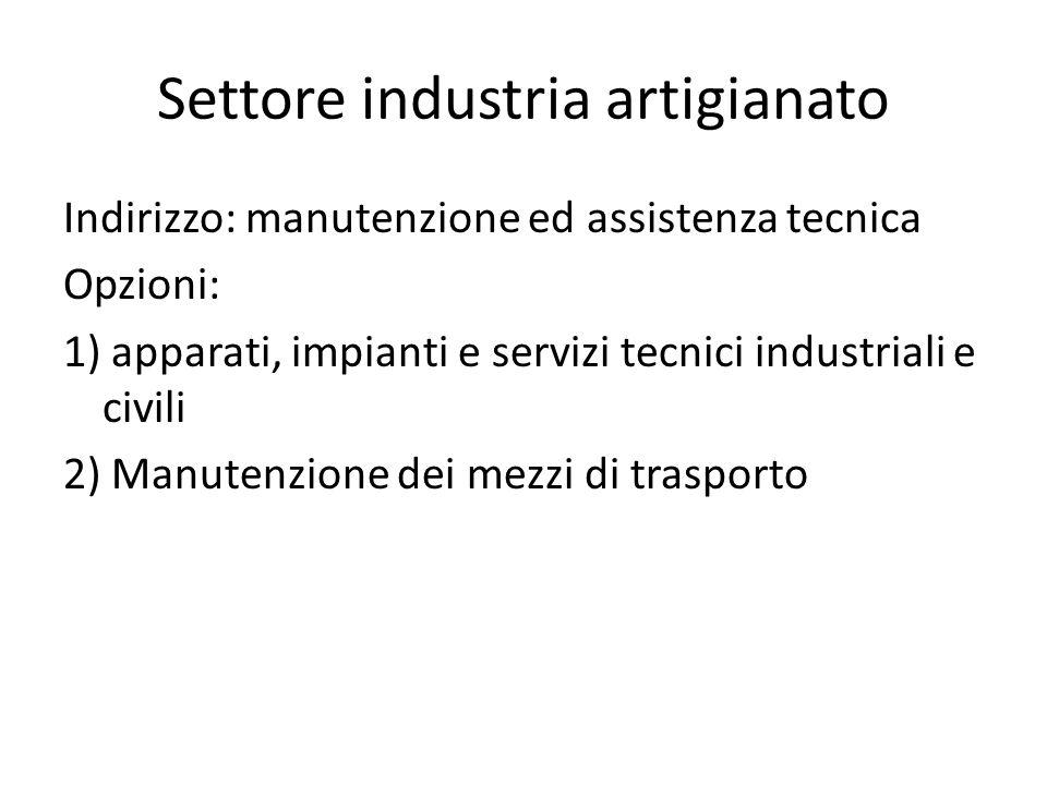 Settore industria artigianato Indirizzo: manutenzione ed assistenza tecnica Opzioni: 1) apparati, impianti e servizi tecnici industriali e civili 2) M