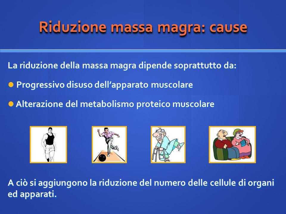 Riduzione massa magra: cause La riduzione della massa magra dipende soprattutto da: Progressivo disuso dellapparato muscolare Progressivo disuso della