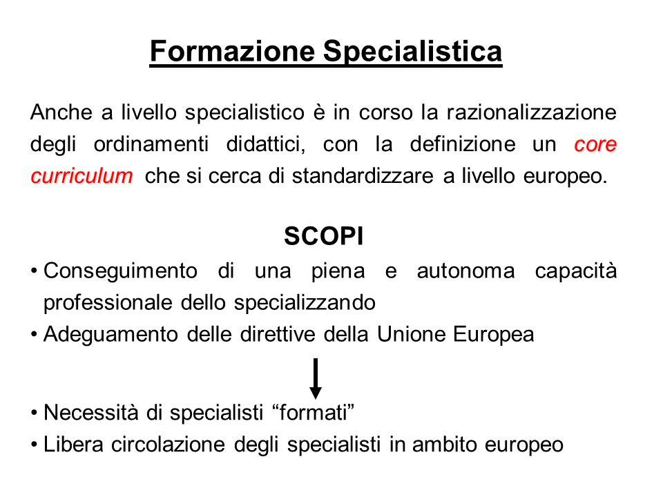 core curriculum Anche a livello specialistico è in corso la razionalizzazione degli ordinamenti didattici, con la definizione un core curriculum che s