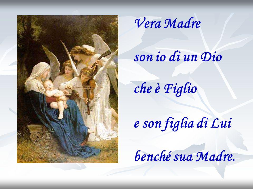 Ed io porrò inimicizia tra te e la donna, fra la tua progenie e la progenie di lei; essa ti schiaccerà la testa Gn 3, 14-15