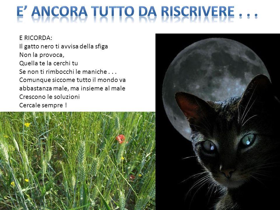 E RICORDA: Il gatto nero ti avvisa della sfiga Non la provoca, Quella te la cerchi tu Se non ti rimbocchi le maniche...