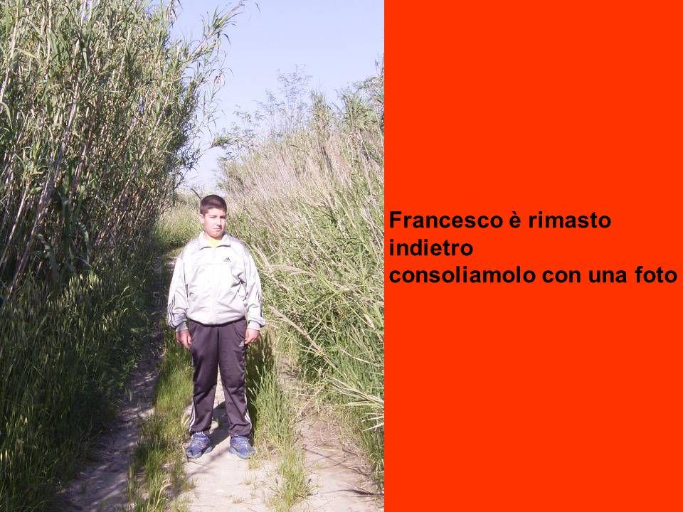 Francesco è rimasto indietro consoliamolo con una foto