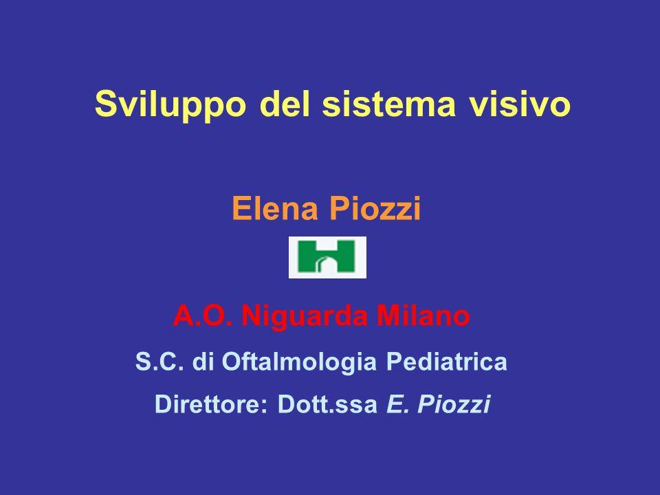 Sviluppo del sistema visivo Elena Piozzi A.O. Niguarda Milano S.C. di Oftalmologia Pediatrica Direttore: Dott.ssa E. Piozzi