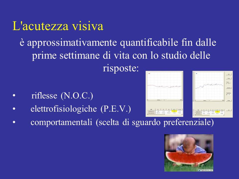L acutezza visiva è approssimativamente quantificabile fin dalle prime settimane di vita con lo studio delle risposte: riflesse (N.O.C.) elettrofisiologiche (P.E.V.) comportamentali (scelta di sguardo preferenziale)