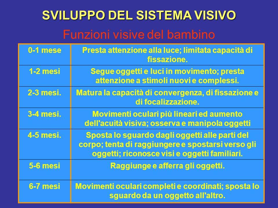 Funzioni visive del bambino SVILUPPO DEL SISTEMA VISIVO 0-1 mesePresta attenzione alla luce; limitata capacità di fissazione.