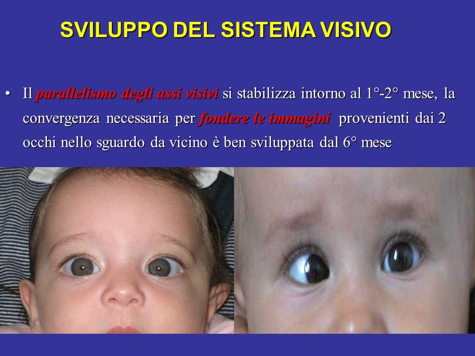 SVILUPPO DEL SISTEMA VISIVO Il parallelismo degli assi visivi si stabilizza intorno al 1°-2° mese, la convergenza necessaria per fondere le immagini p