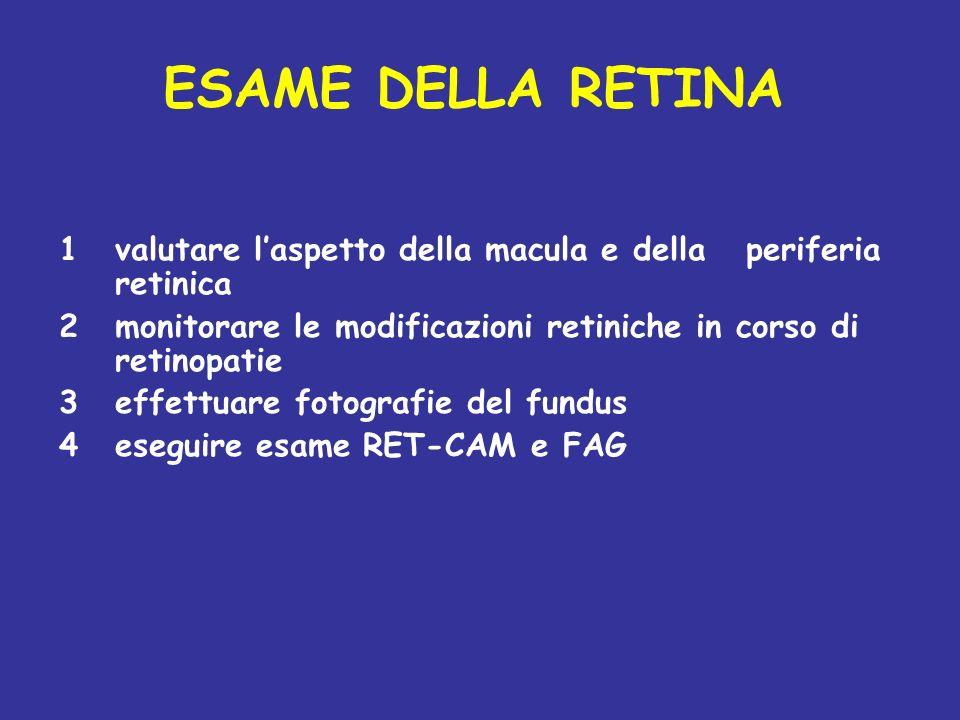 ESAME DELLA RETINA 1valutare laspetto della macula e della periferia retinica 2monitorare le modificazioni retiniche in corso di retinopatie 3effettua