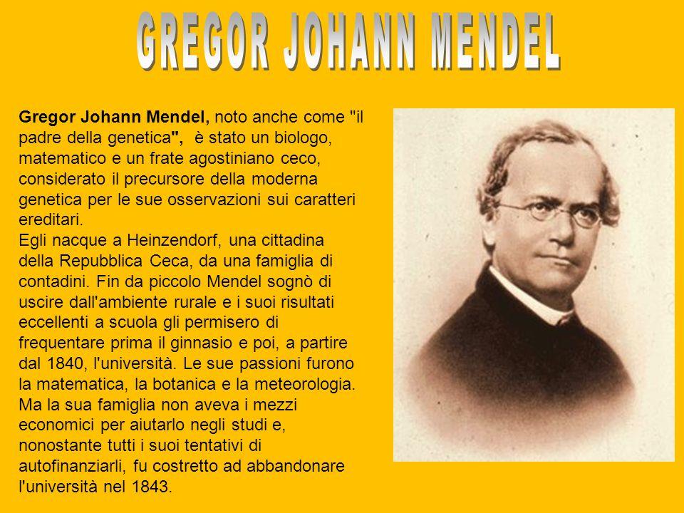 Gregor Johann Mendel, noto anche come
