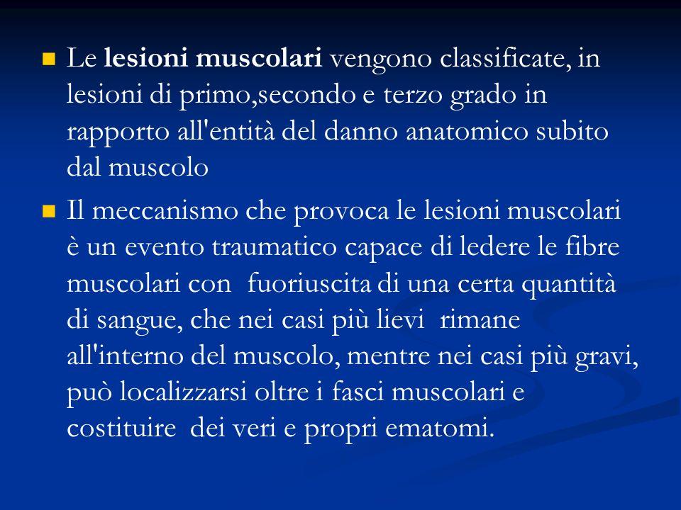Le lesioni muscolari vengono classificate, in lesioni di primo,secondo e terzo grado in rapporto all'entità del danno anatomico subito dal muscolo Il