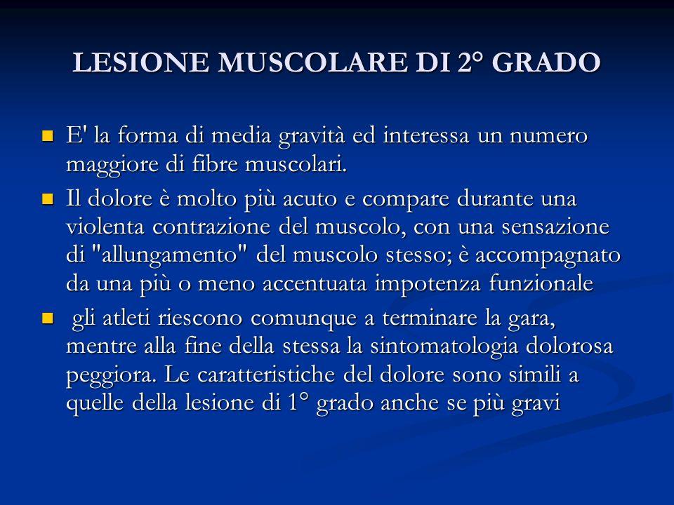 LESIONE MUSCOLARE DI 3° GRADO L alto numero di fibre muscolari lesionate in questo grado di lesione muscolare comporta la soluzione di continuità anatomica del muscolo, percepibile alla palpazione come uno scalino nel contesto del ventre muscolare.