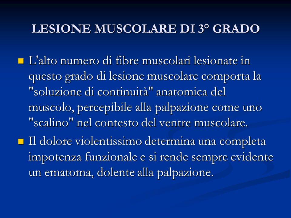 LESIONE MUSCOLARE DI 3° GRADO L'alto numero di fibre muscolari lesionate in questo grado di lesione muscolare comporta la