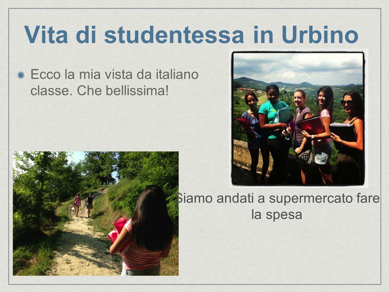 Vita di studentessa in Urbino Ecco la mia vista da italiano classe. Che bellissima! Siamo andati a supermercato fare la spesa