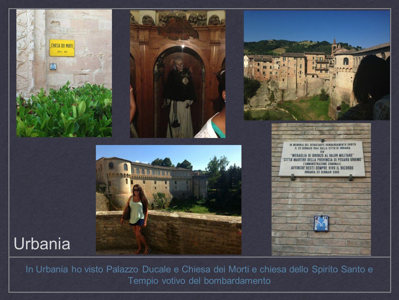 Firenze Abbiamo veduto Basilica di San Miniato al Monte, Ponte Vecchio e Galleria degli Uffizi