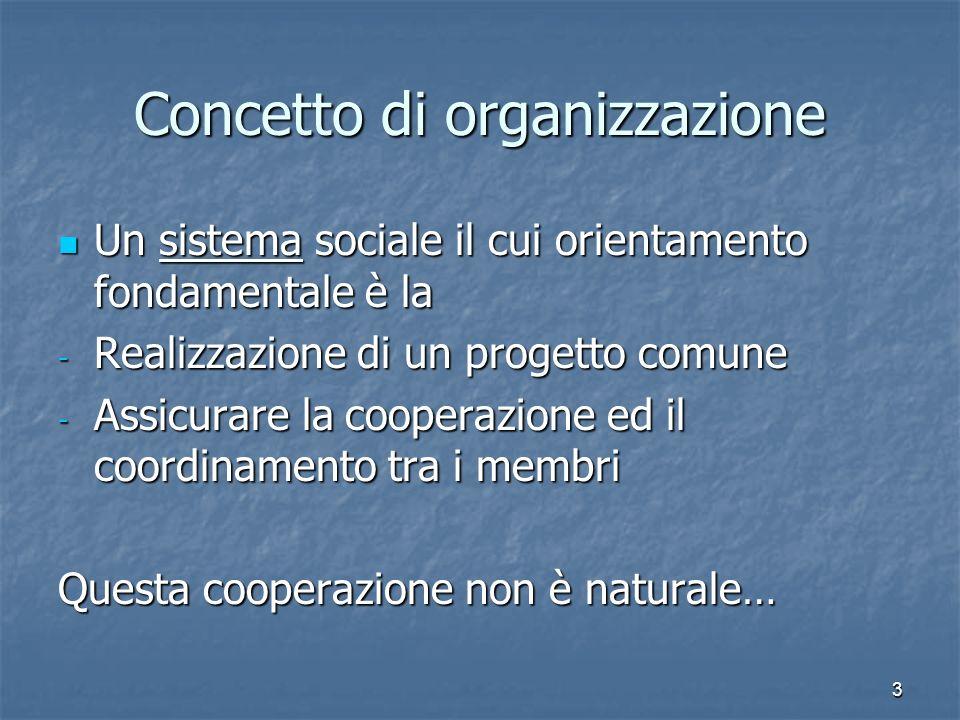 3 Concetto di organizzazione Un sistema sociale il cui orientamento fondamentale è la Un sistema sociale il cui orientamento fondamentale è la - Reali